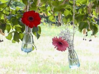 MC Events- Organiser son mariage en Aude